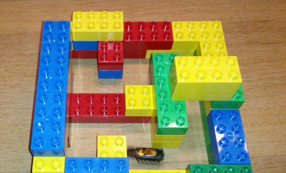 Hexbug Nano Maze Lego Duplo