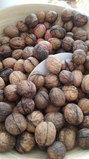 Hidden clue - in nuts